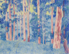 Marie Ban Modré eukalipty