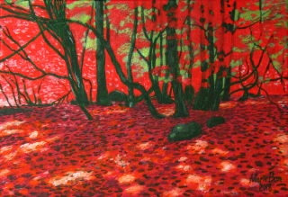 Marie Ban - Red Grove, Beskydy